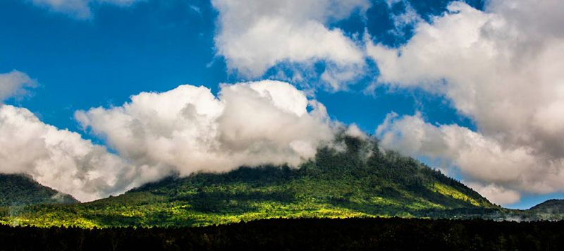 Отдых на Бали. Природа